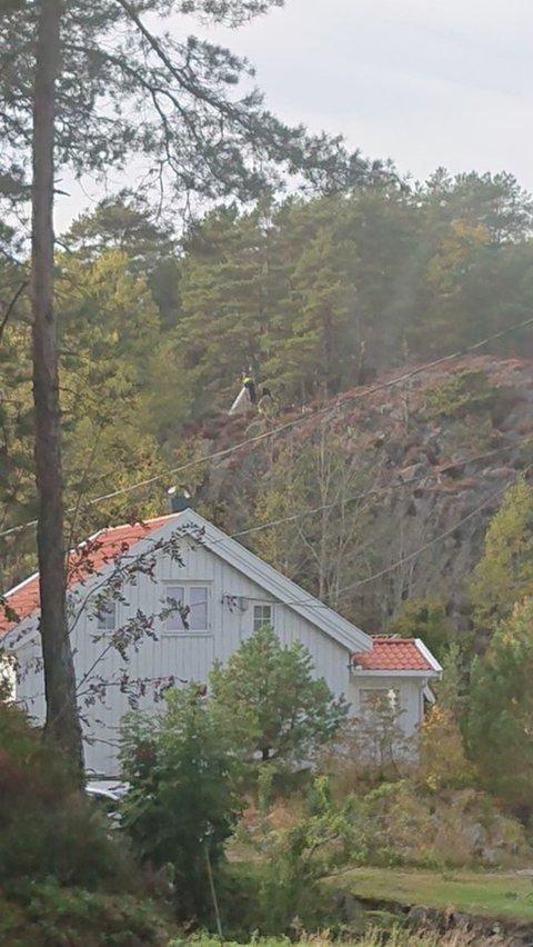 At verneverdige hus i området ble spart er leder i Homesund vel svært takknemlig for.