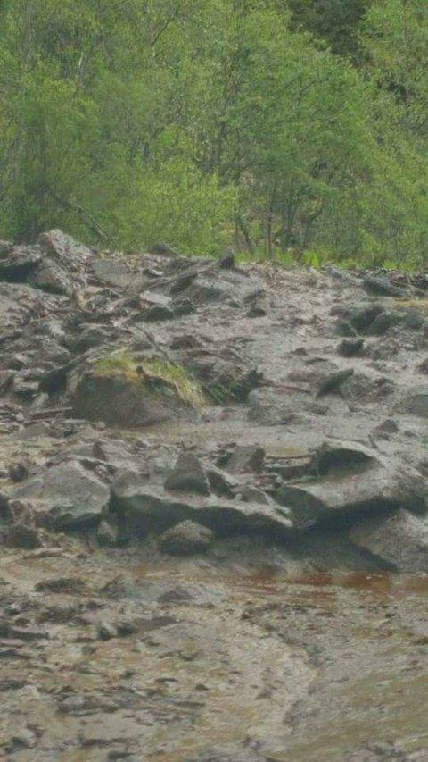 Bilde tatt av jordraset.