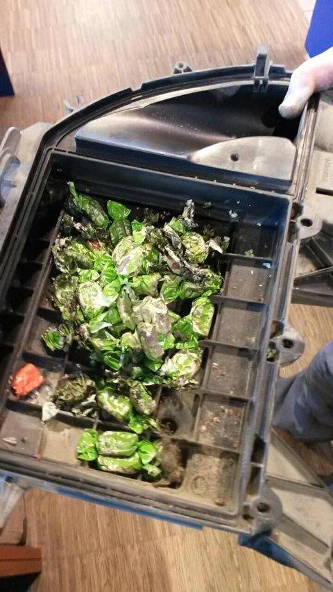 HERJET: Slik så det ut i motoren til Nina Koteng for tre år siden. På bildet kan man også skimte en død mus.