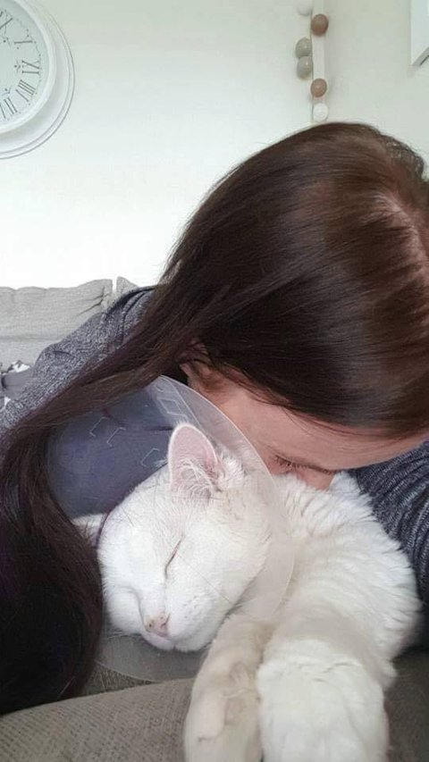 Mona frykter for kattens liv. Fra nå av blir «Kaizer» en innekatt.