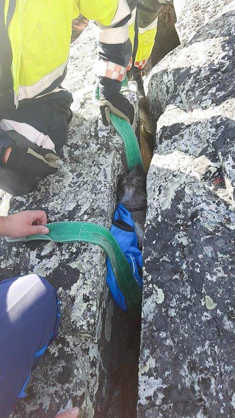REDNINGSAKSJON: Her holder Alta brann- og redningskorps på med å få den kiniesiske nakendhunden opp av bergsprekken på Komsa.