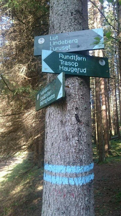 VERNET OMRÅDE: Lutdalen ligger mellom Lutvann og Nøklevann, og inngår i Hauktjern friluftslivsområde.