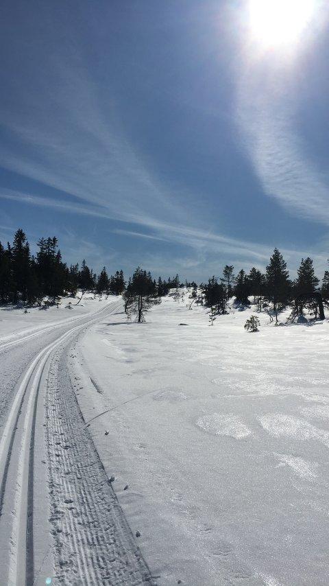FLOTT: En skitur i disse omgivelsene er godt også for sjelen.