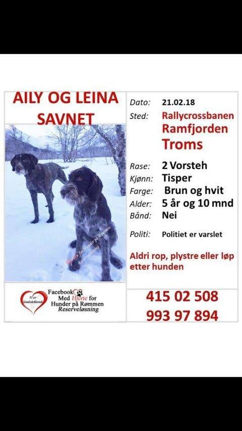 DELES: Denne etterlyst-plakaten har blitt hengt opp rundt omkring i Troms, og på diverse grupper på Facebook.