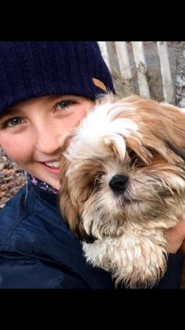 VANSKELIG: Hunden Miro er egentlig Karoline (11) sin hund. – Det har vært vanskelig for Karoline. Hun har vært helt knust etter Miro ble angrepet, sier mor og matmor Heidi Bjerkan Nagy.