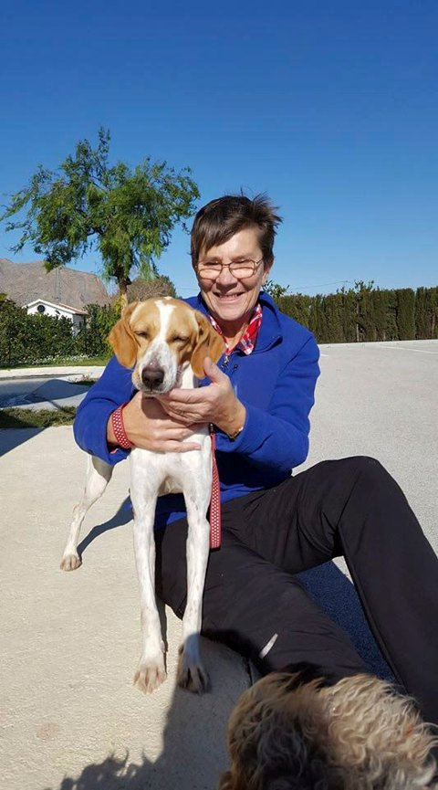 PÅ TUR: En av Mettes oppgaver som frivillig er å lufte hundene. - De er så takknemlige for en liten tur, sier hun. Her med en fornøyde kar som bor på shelteret. Foto: privat
