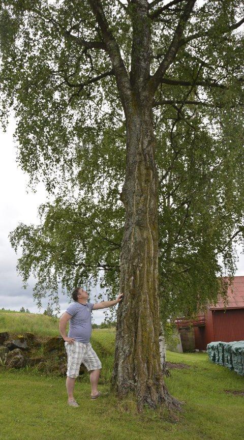 Ny skulptur: Lars Jørgen Tokstad vurderer å sette opp en ny treskulptur den dagen treet i innkjørselen skal ned. foto: haakon skarpnord