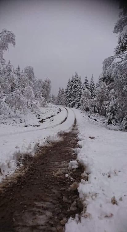 SNØ I SANDE: Årets første snøfall på Vestskauen.