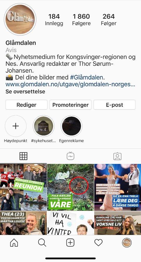 FØLG OSS: Følg Glåmdalen på Instagram, post et bilde med emneknaggen #glåmdalen og vær med i trekningen av 10 billetter til den store reuinonfesten i Kongsvingerhallen lørdag kveld.