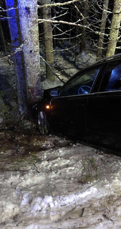 Bilføreren mistet kontrollen over bilen og kjørte av veien.