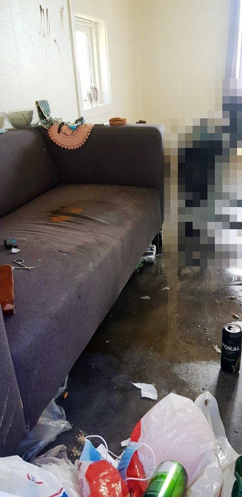 BOR HER: Slik ser det ut i leiligheten til den eldre skienskvinnen. Både sofaen og gulvet er tilgriset med avføring og urin.