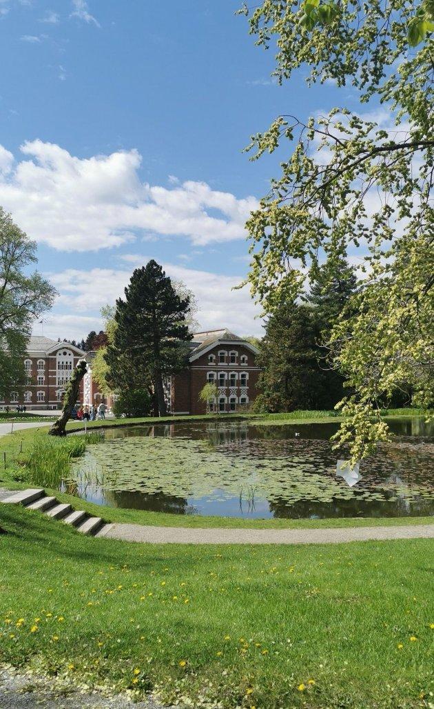 GOD FØLELSE: Vi har et fantastisk flott Universitet, flott og landlig natur og utallige turstier, men Ås sentrum - det er jeg ikke særlig stolt av. Jeg har så innmari lyst til å kjenne på den ordentlig gode følelsen når jeg går i Ås sentrum, skriver Malin Fiske i sitt leserinnlegg.