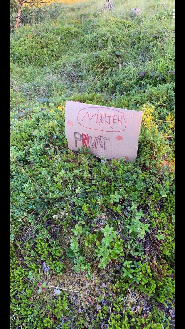 Et skilt ved veien, laget av et barn.