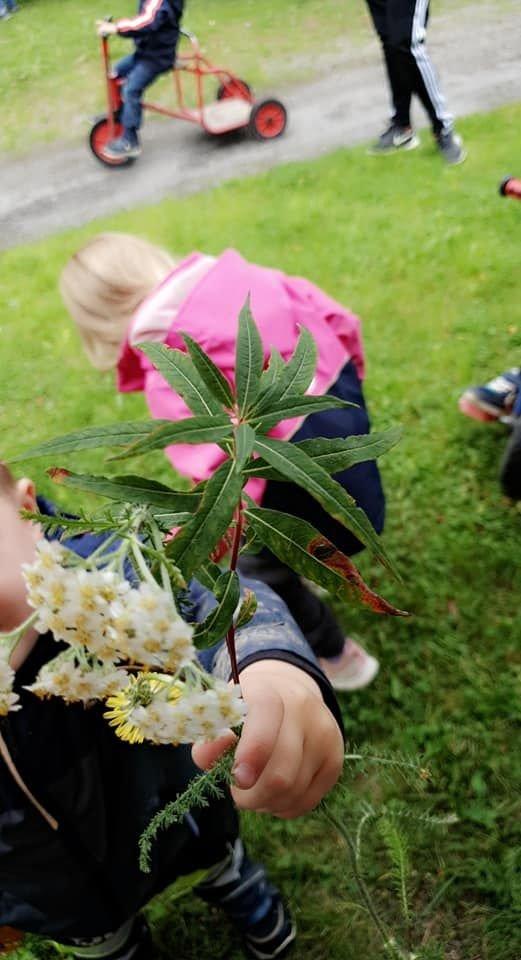 Blomsterbukett til styrer