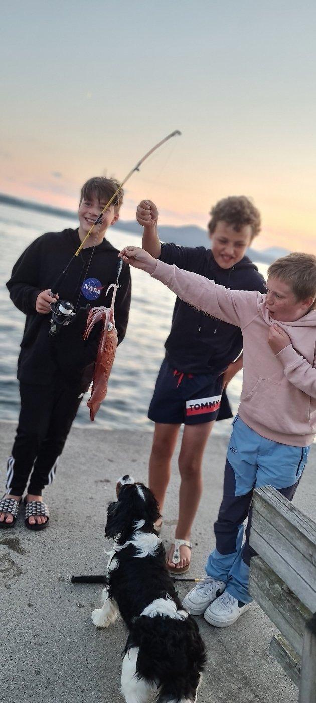Desse gutane fekk blekksprut på Kringleneset på Sandvoll! Ei utruleg kjekk oppleving. Casper fekk den på fiskestang, og Simon og Lukas var med.
