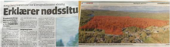 Naturkrise og skogsnedhugging. Samme system.