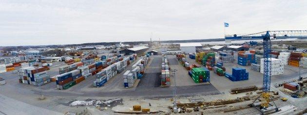Skår i gleden: Borg Havn på Øra bygger ut og har fått gledelig beskjed om at farleden skal utbedres for en milliard. Trioen Haabeth, Gulbrandsen og Lervik påpeker samtidig at havna er avhengig av bedre veiforbindelse.