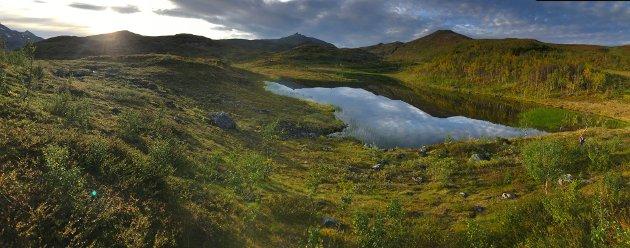 Vardfjellet og Bukkenområdet er viktige både for oppholds- og trekkveier for elg og rein, her jaktes det etter elg og rype, her går folk på tur, her er et laksevassdrag som vil bli berørt, og alle ønsker å verne om sine drikkevannskilder. I tillegg kommer både luft-, støy- og vannforurensning inn i det store bildet, skriver Per Henriksen. Vardfjellet ses til høyre på dette bildet.