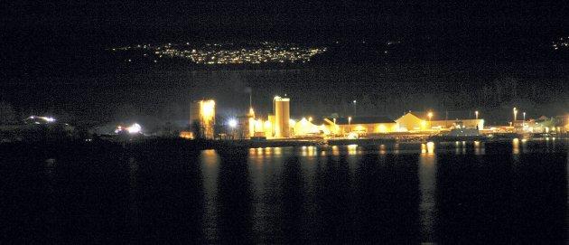 Langøya: – Med en estimert verdi på 270 millioner kroner, vil Langøya kunne gi et viktig bidrag i felleskassa, mener MDG. Foto: MDG