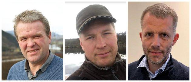 HØgSKULE: Kommunane i Gudbrandsdalen bør gå saman om å etablere eit høgskulesenter i Gudbrandsdalen med mål om å vidareutvikle regionen og lyfte fram næringslivet, skriv Ole Tvete Muriteigen, Anders Bergseth, og  Asbjørn Stensrud (Sp).