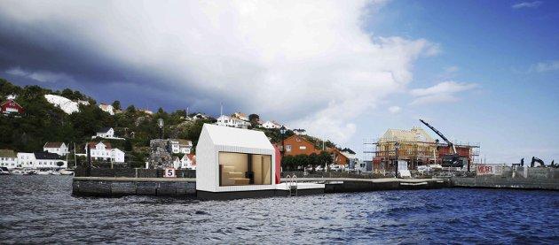 FORSLAG: Her er forslaget partiet har fått tegnet opp. Innleggsforfatteren skriver: rak arkitektur as i Oslo, har slått et slag for folkehelsa og laget idéskisser til oss. Dette er forslag for å visualisere hvordan det kan se ut. Det røde tilbygget er et omkledningsrom. Badstuen kan også bygges på selve moloen. (Rommet har fiktive ytre mål på ca. 3,5X4,5 m. Selve badeflåten 8,5 m, dette er selvsagt bare en idé)Foto: Privat