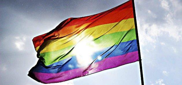 FLAGGDEBATT: – Det er galt at mans kal noen den hedersbevisning en flagging er bare fordi man har en homoseksuell legning, skriver innleggsforfatteren.Foto: Arkiv