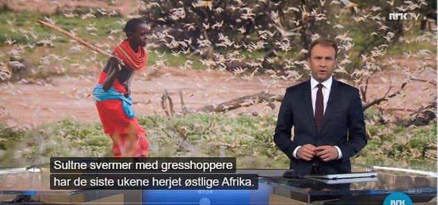 NRK nytter nå enhver hendelse i naturen til å skremme opp folk