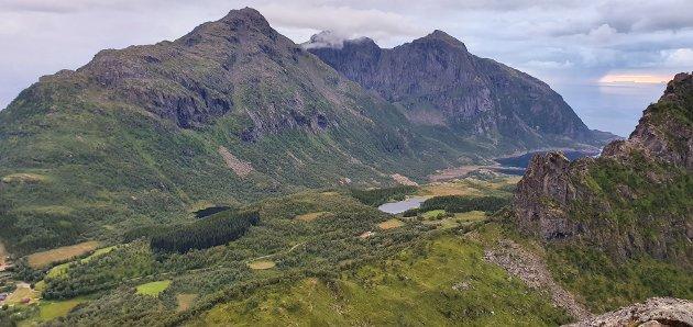 NÆRING I DISTRIKTENE: Beitenæringene i Nordland er viktige for matproduksjon, naturmangfold og utnyttelse av ressurser, fastslår skribentene. Bildet viser utsikt fra Hamarøyskaftet, et beiteområde for sau.