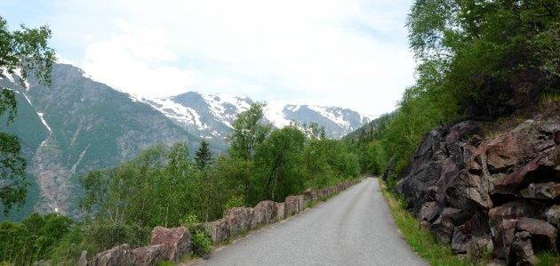Skjeggedalsvegen: Ein rapport Norconsult har laga for Statkraft viser at vegen ikkje lever opp til dagens krav.