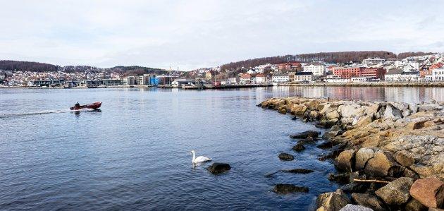 GOD PLASS: Larvik i et konsentrat får du her. Med utsikt til Sverdrupmoloen og byen bakenfor.