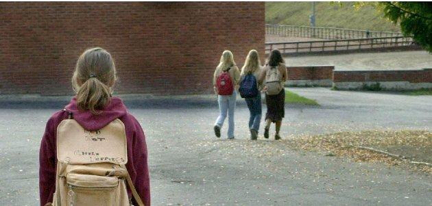 IKKE BRA: I det siste har det kommet fram at ikke alle har det bra på skolen i Nordre Land, skriver artikkelforfatteren.