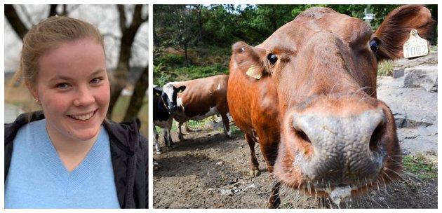 ADVARER: Dersom vi fortsetter importen av kjøtt og melk vil vi få flere bakterier som er antibiotikaresistente – bakterier og virus som vi ikke lenger har en medisin til å kurere, skriver Oline Knutsen.