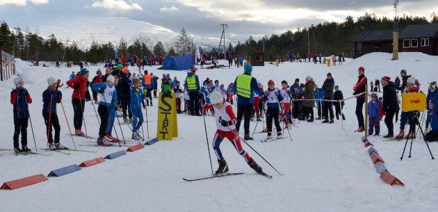 Totalt 250 løpere stilte til start på Vikingrennet i Ulvik.