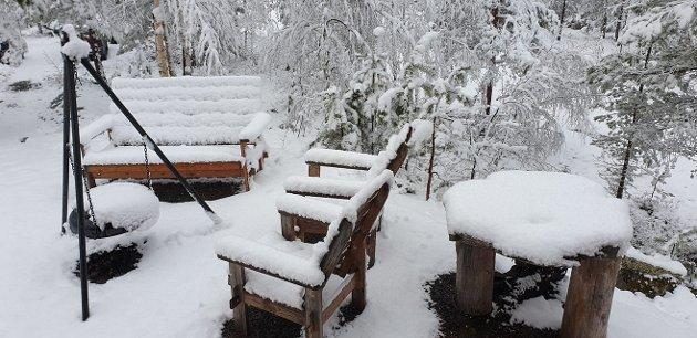 Bilde fra Fjorda søndag morgen.