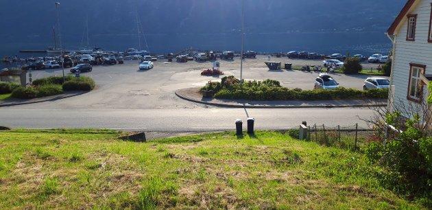 OPPLEVER PRESS: Etter at Tyssedal og Skjeggedal lenge har fått unngjelde for turismens vrede i form av parkeringsutfordringer, står Lofthus nå for tur.