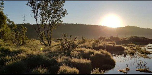 Istidsraet på Salsnes kan vi ikke grave store grusgruver i, som blir til forsenkninger i naturlandskapet som på en vikingegravhaug. Grusgruve på Salsnes er «gravrøveri»! Det skriver SV-politikeren Torgeir Strøm.