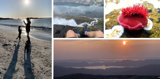 NYDELIG: Haugalandet har natur i verdensklasse, enten det er på Karmøy-strendene, Langfoss i Etne, Gråhorgja i Vindafjord eller under vann.