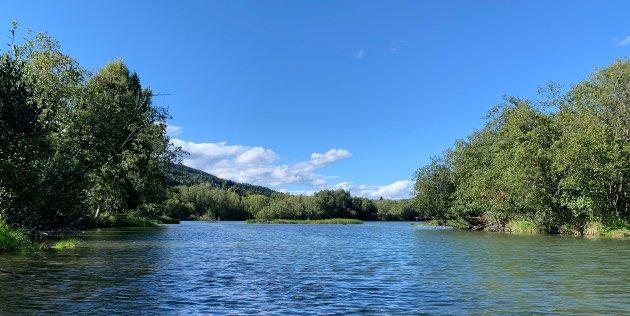 Naturreservatet Lågendeltaet, ved Våløya i Hovemoen, området hvor Lillehammer kommunestyre har vedtatt å legge fire felts motorveisbro. Nå mobiliseres imidlertid motstanden for å omgjøre planer om inngrep sentralt i verneområdet.