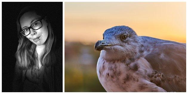 VANSKELIG Å FÅ HJELP: Ida Kristine J. Stenshjemmet prøvde flere instanser for å få hjelp da hun og familien fant en skadet fugl. Uten hell.