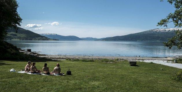 SOMMER: Juni er godt i gang, og ja, noen sommerdager har det vært, men fremdeles ligner dette mistenkelig på nordnorsk sommer vi glemmer fra år til år, skriver Sven Henriksen.