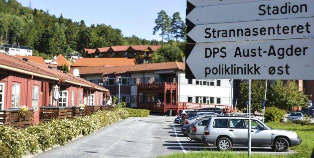 3,2 millioner kroner: «Tvedestrand kommune alene brukte godt og vel 3,2 millioner», skriver fylkesleder i Norsk sykepleierforbund, Anne H. Vartdal