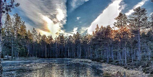 Oppsiktsvekkende: Hans Kristian Solberg i Enebakk Sp mener Enebakk Venstre viser en oppsiktsvekkende arroganse overfor lokalpolitiske vedtak når det gjelder Østmarka nasjonalpark.