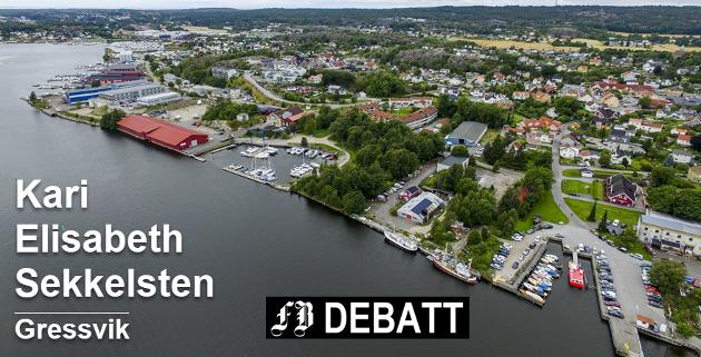 Med fergestedet nede til høyre viser bildet området for Kari Elisabeth Sekkelstens spasertur. Foto: Erik Hagen