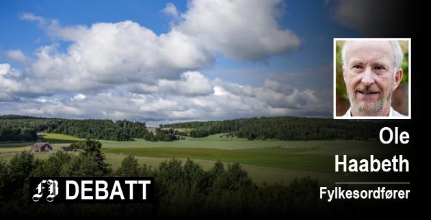 Et sentralt punkt i planen som nå sendes ut til høring er at Tofteberg i nordre Borge gis status som nytt regionalt næringsområde for Nedre Glomma.