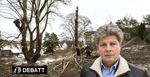 Alf Ulven fotografert på Kniple gård etter at han felte trær i hagen og kom i konflikt med kommunen i februar i fjor.