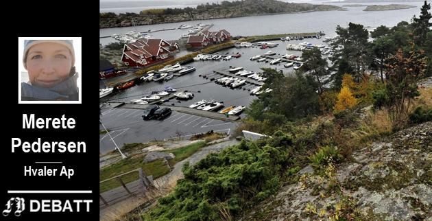 – Som politikere skal vi først og fremst ivareta våre innbyggeres behov og ønsker, ikke sørge for at Borg Havn skal ha gode inntekter på havna, skriver Ap-representant Merete Pedersen.