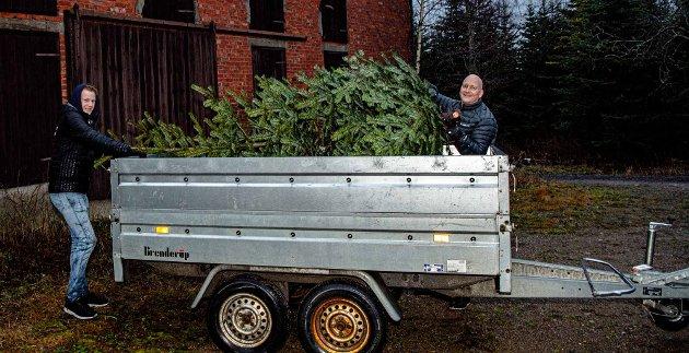 Philip Busch (17) og far Christian Busch har hentet seg en 3 meter høy edelgran. Hjemme i Drøbak er det skråtak og høyt opp til bjelkene der juletreet står.