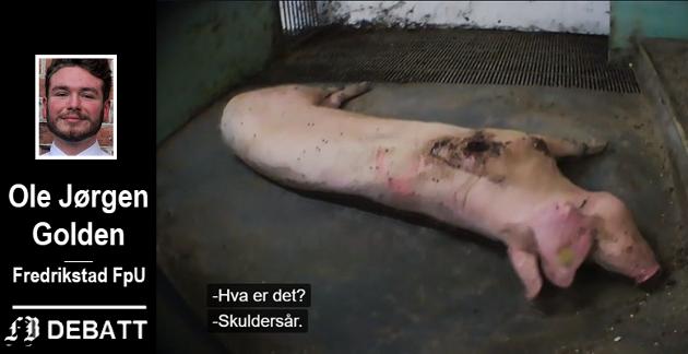 FpU-politikeren Ole Jørgen Golden er opprørt over behandlingen som ble dokumentert i Brennpunkt, og mener dyrepoliti er nødvendig for å rydde opp.