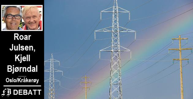 Kraftlinjer med gylne muligheter. Julsen og Bjørndal mener linjenettet i Norgesnett kan gi en avkastning på ca. 90 millioner kroner pr. år. De anbefaler å selge ut FEAS med datterselskaper og satse videre nettopp på ledningsnettet som forsyner innbyggere og bedrifter med elektrisk strøm.