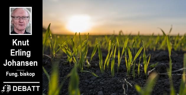 «Hvis ikke hvetekornet faller i jorden og dør, blir det bare det ene kornet. Men hvis det dør, bærer det rikt frukt.»